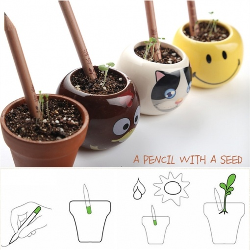 Sprout: Plantable Pencil with Plants Seeds (8 Pencils/Pack)