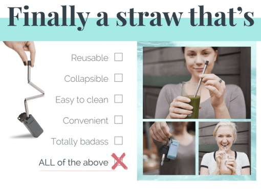 The Final Straw Keychain Reusable Collapsible Keychain Straw